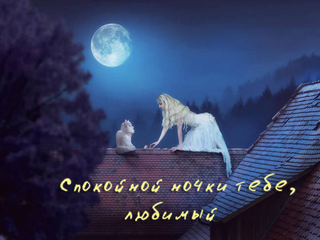 Пожелания спокойной ночи любимому - красивые картинки