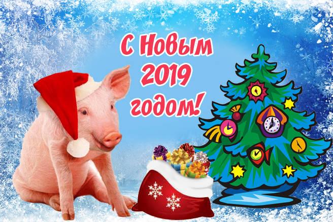 Картинки-поздравления с Новым годом 2019 прикольные