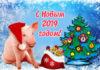 Лучшие Прикольные картинки свиньи к Новому 2019 году