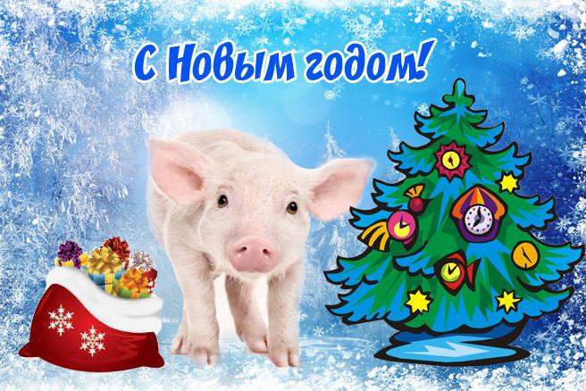Прикольные картинки с Новым 2019 годом свиньи скачать бесплатно