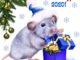 ПОздравления с Новым годом Крысы в стихах