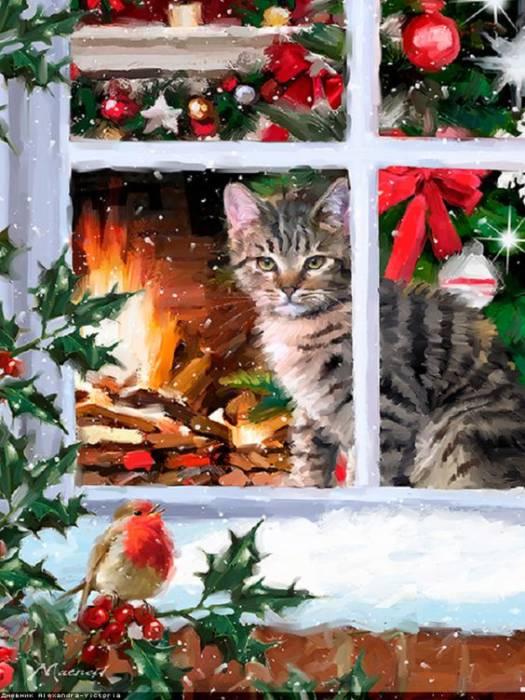 Католичсекое Рождество - красивые картинки котята