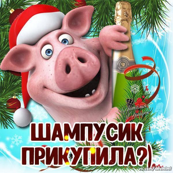 Скоро Новый год свиньи - картинки прикольные бесплатно