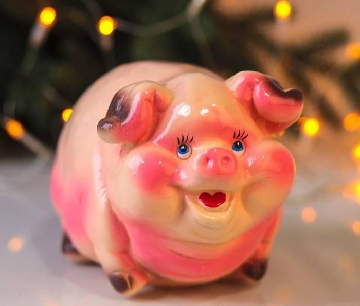 Прикольные картинки свиньи к Новому 2019 году скачать бесплатно