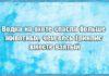 Смешные анекдоты и афоризмы про водку (24 штуки)