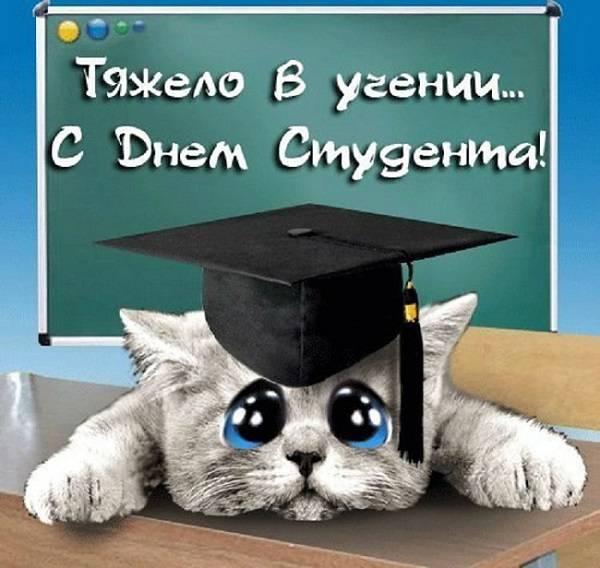 Прикольные картинки и открытки с Днем студента