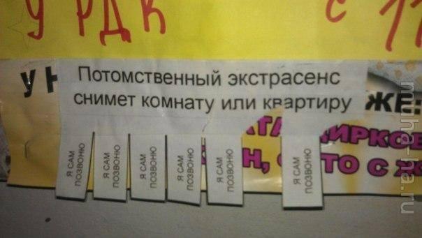 Смешные картинки с надписями до слез (18 штук)