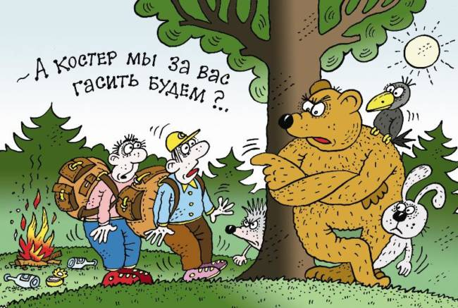 Самые смешные анекдоты про лесных зверей
