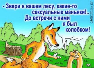 Смешные анекдоты про лесных зверей и домашних животных до слез
