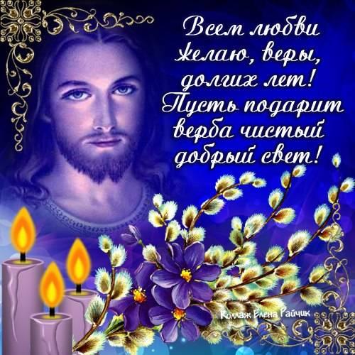 Поздравления c Вербным воскресеньем в картинках от Елены Райчик
