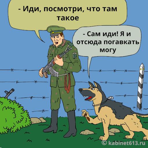 Смешные анекдоты про пограничников до слез