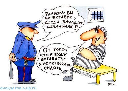 Смешные анекдоты про тюрьму и заключенных