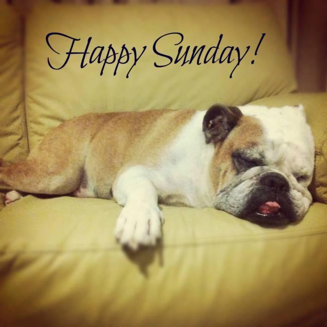 Воскресенье - прикольные картинки с надписями