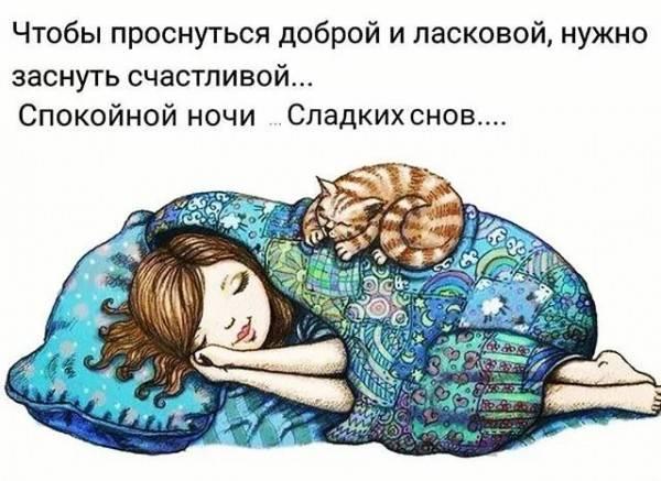 Смешные и прикольные картинки с пожеланиями спокойной ночи с надписями