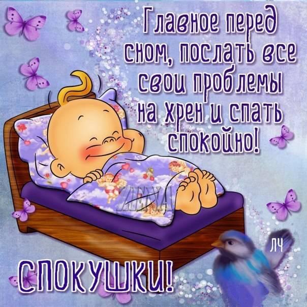 Приколы приятных снов картинка