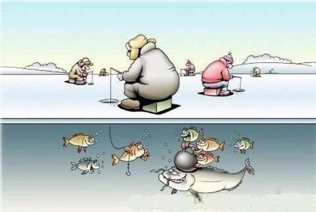 Прикольные и смешные картинки про рыбалку ко Дню Рыбака