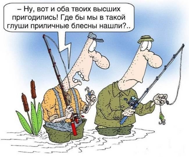 Анекдоты про рыбалку читать