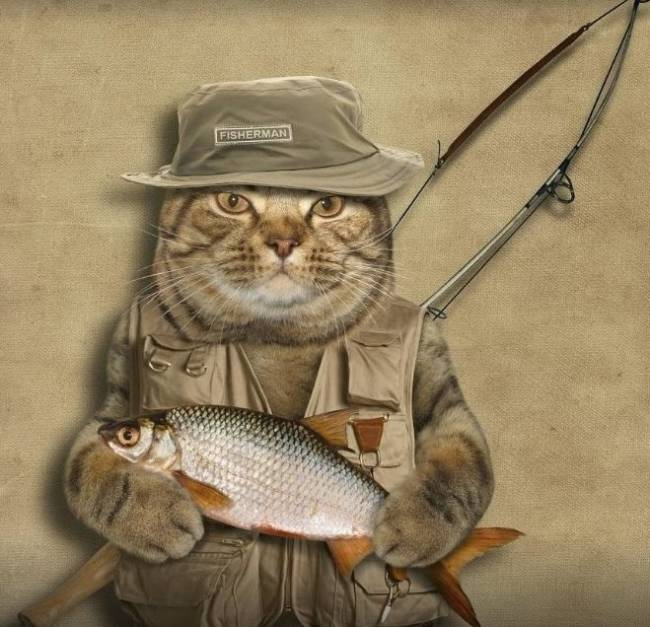 Прикольные стихи про рыбалку ко Дню рыбака
