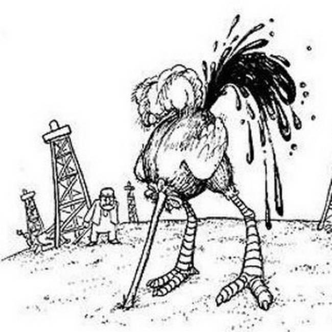 Прикольные картинки про нефть, смешные