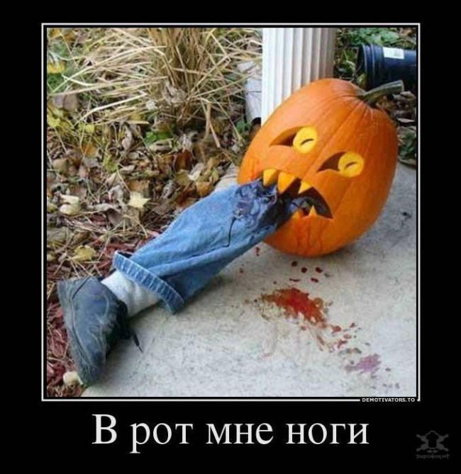 Смешные и прикольные картинки про Хэллоуин скачать