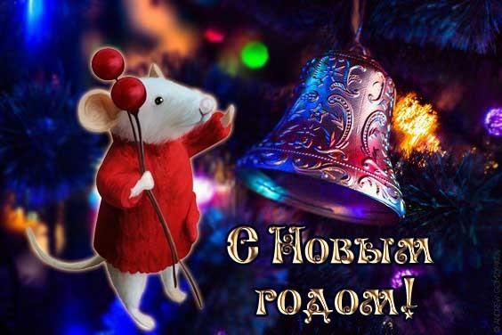 поздравления с Новым годом Крысы красивые, прикольные, короткие