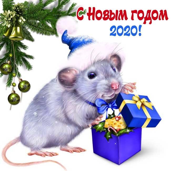 С Новым годом Крысы октрытки красивые