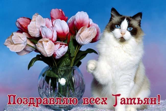 Поздравления с Татьяниным Днем 25 января прикольные