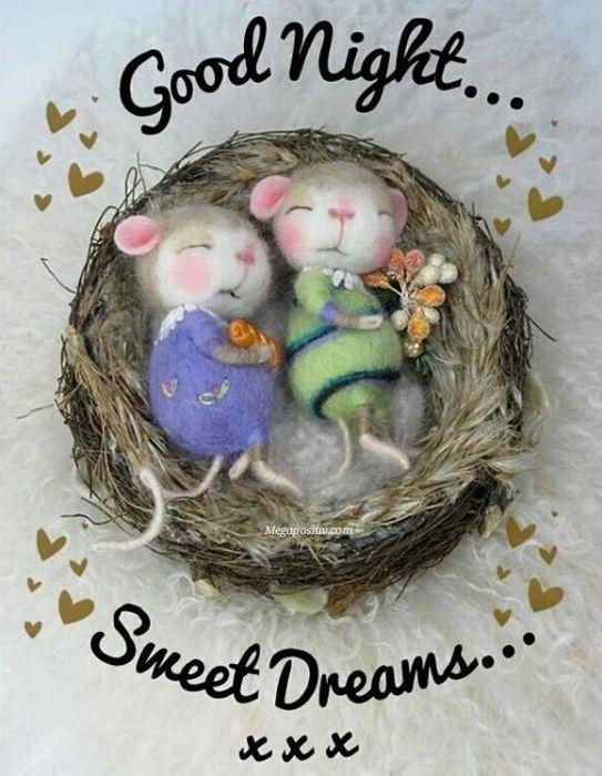 Необычные картинки с пожеланиями доброй ночи
