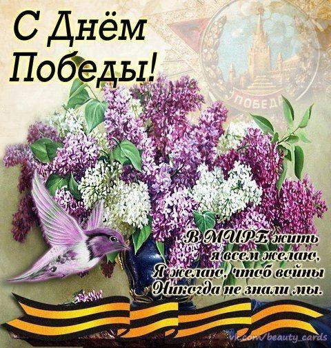 Поздравления с 9 мая (34 картинки с поздравлениями)