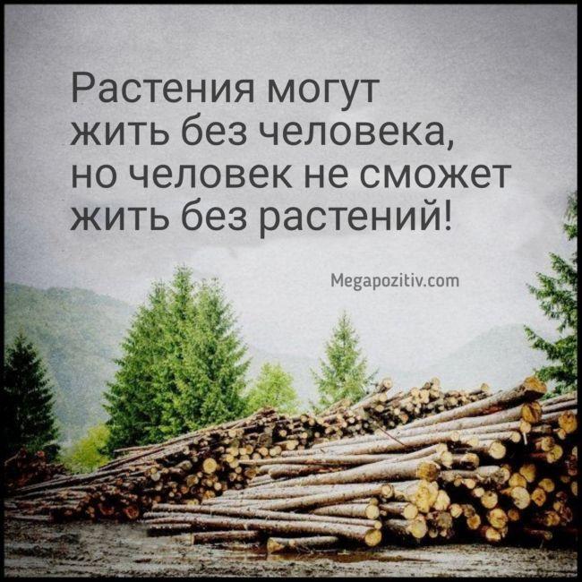 Проблемы окружающей среды картинки