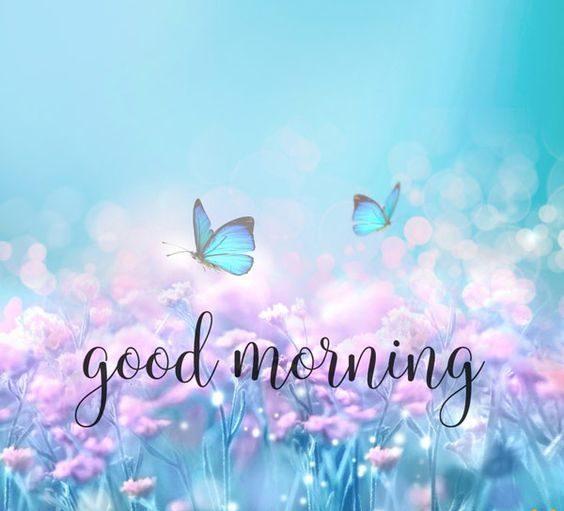 Доброе утро картинки