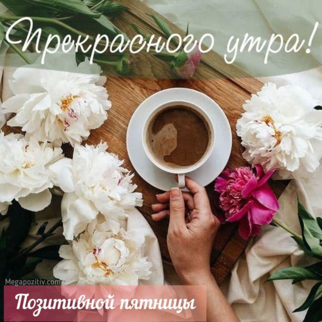 Доброе утро пятницы картинки
