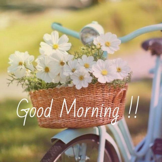 С добрым утром открытки