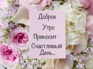Пожелания доброго утра и дня