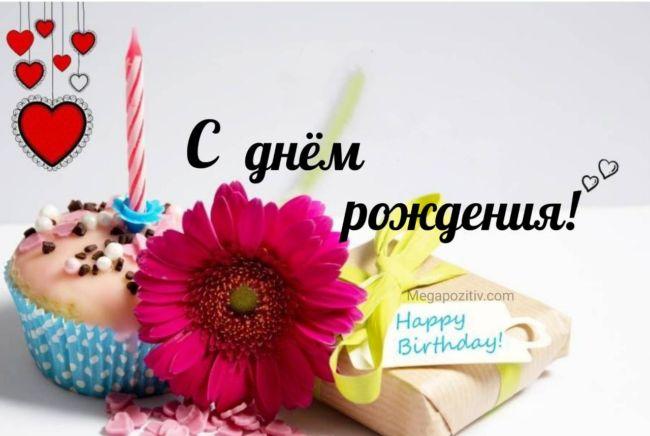Смешные тосты с днем рождения