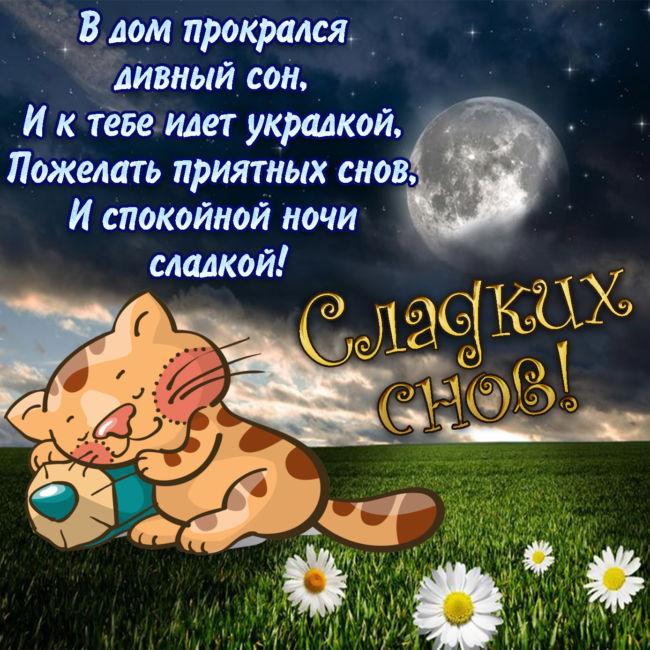 Пожелания спокойной ночи