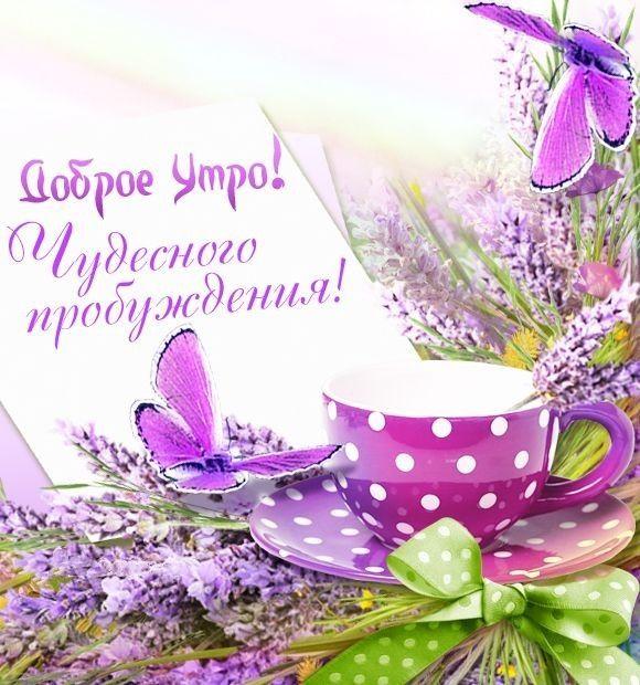 Пожелания доброго утра и хорошего дня