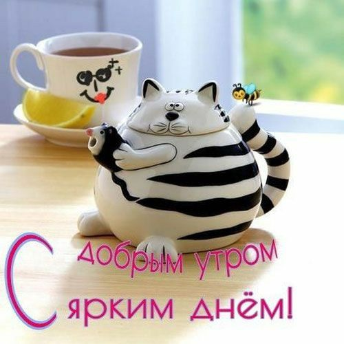 Понедельник доброе утро смешные картинки