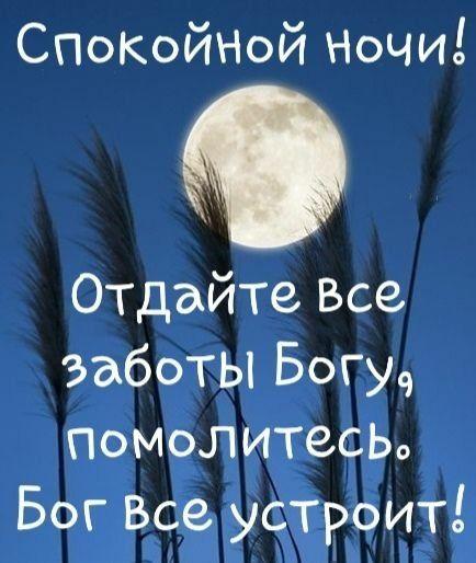 Красивые пожелания спокойной ночи девушке