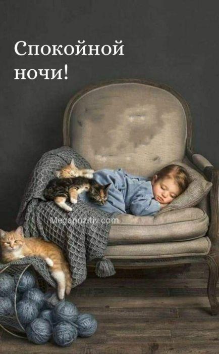 Открытки с пожеланиями спокойной ночи