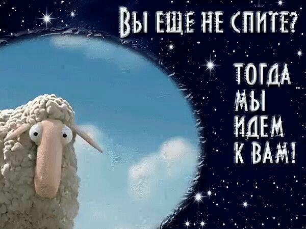 Пожелания спокойной ночи бесплатно