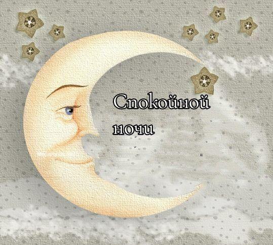 Пожелания спокойной ночи своими словами короткие