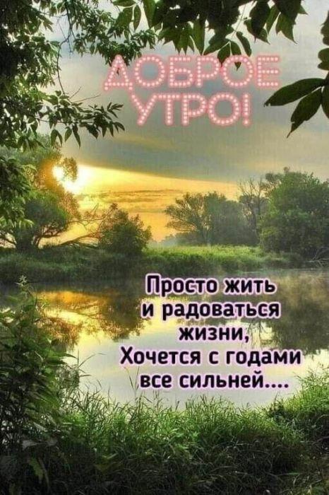 С добрым утром и новым днем картинки