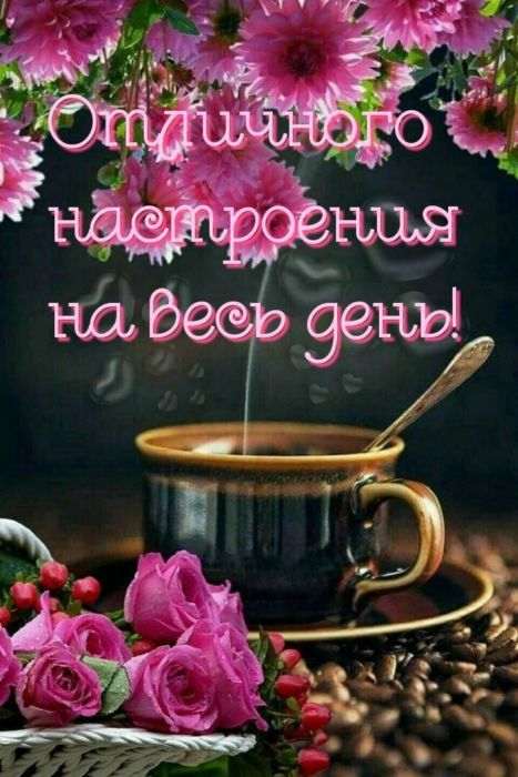 Доброе утро прикольного дня