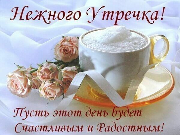 Скачать бесплатно доброе утро и хорошего дня