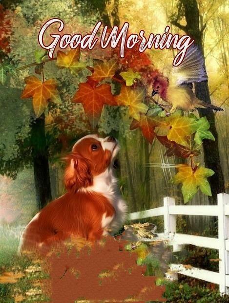 Доброе красивое осеннее утро