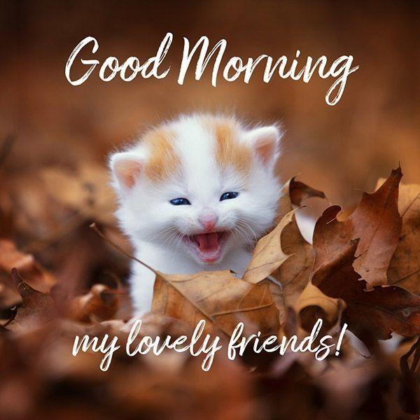 Доброе утро на английском