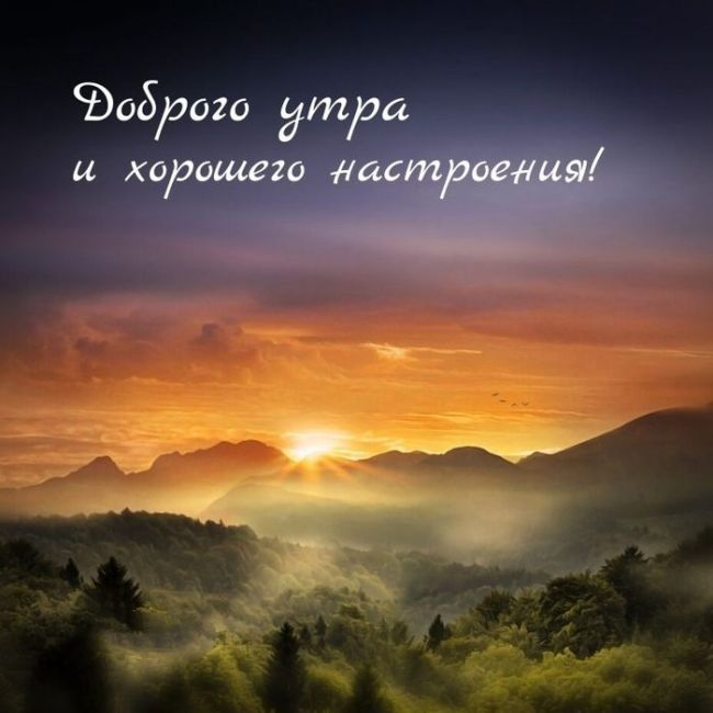 Доброе утро природа