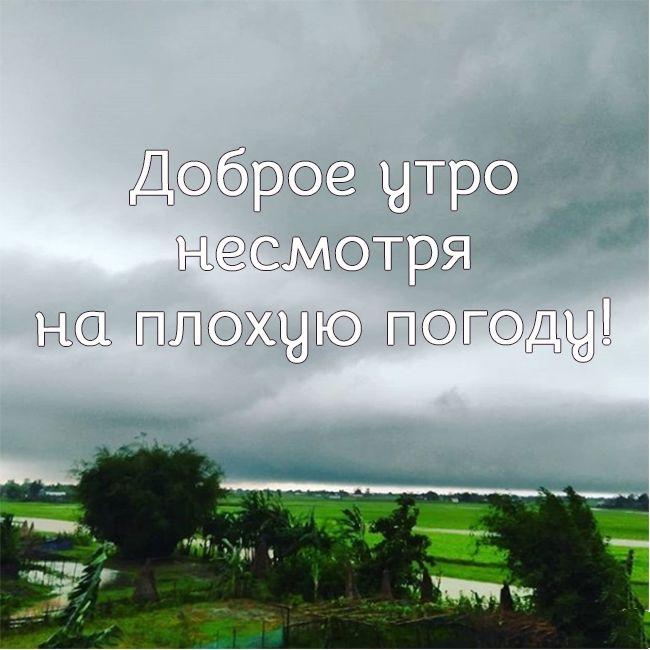 Доброе утро дождь