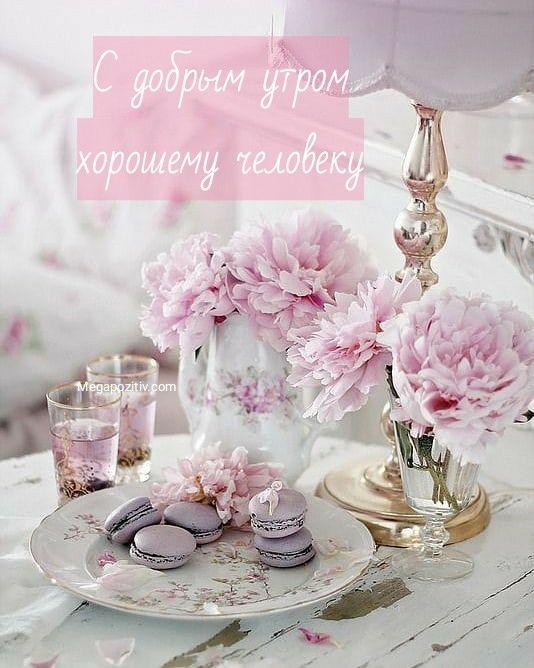 Добрым людям доброе утро